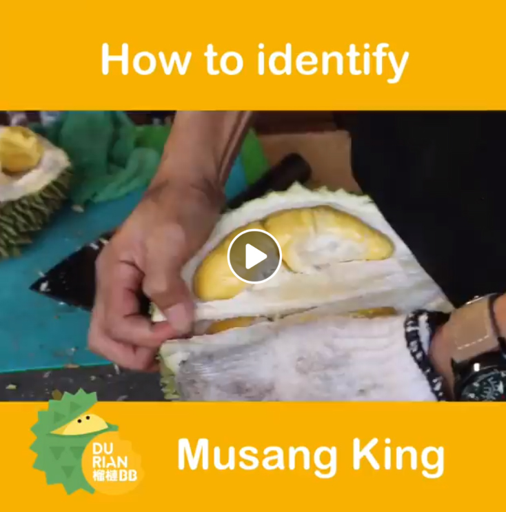 How to Identify Musang King